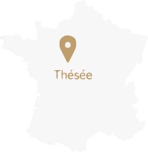 france thésée loire cher beauval gîte